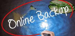 online-backup-computer-pro